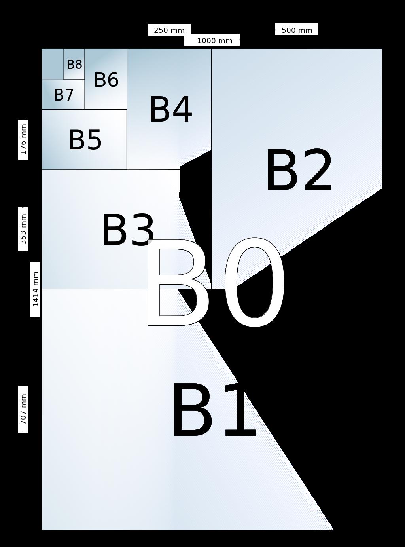 B_size_illustration-svg.png
